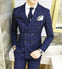 Picture of Double Breasted Navy-Blue Check Suit